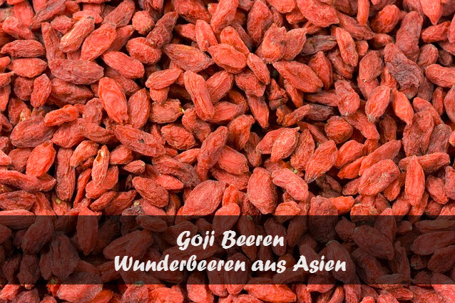 goji beeren wunderfr chtchen aus asien lecker und gesund. Black Bedroom Furniture Sets. Home Design Ideas