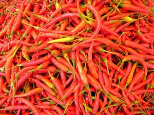 chilli-pepper-449_1280